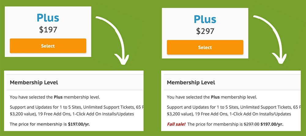 Example of how we faked a price increase to test the effect on conversions